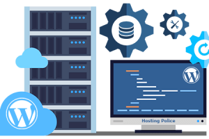Explore everything about the world-class PBN hosting services and make an informed decision