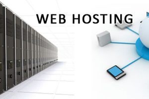 Meet Your Requirement By Choosing The Right Website Host
